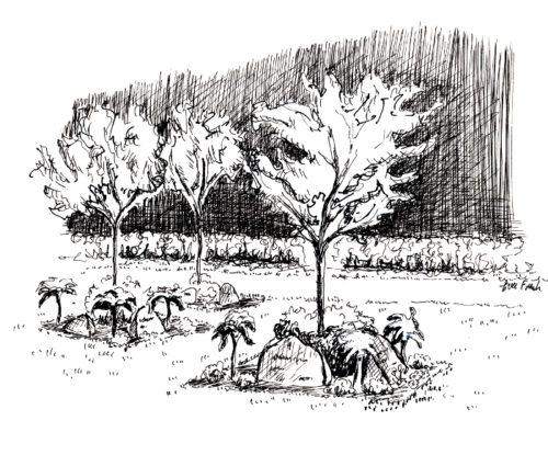 Tustegning af firkantede plænebegravelsesfelter på Vorbasse kirkegård.